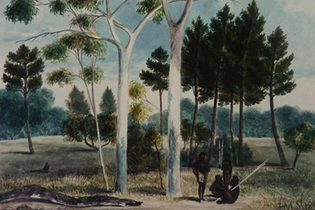 (Extract from) Pine Forest, Adelaide,  J. M. Skipper, 1838 (AGSA Collection)
