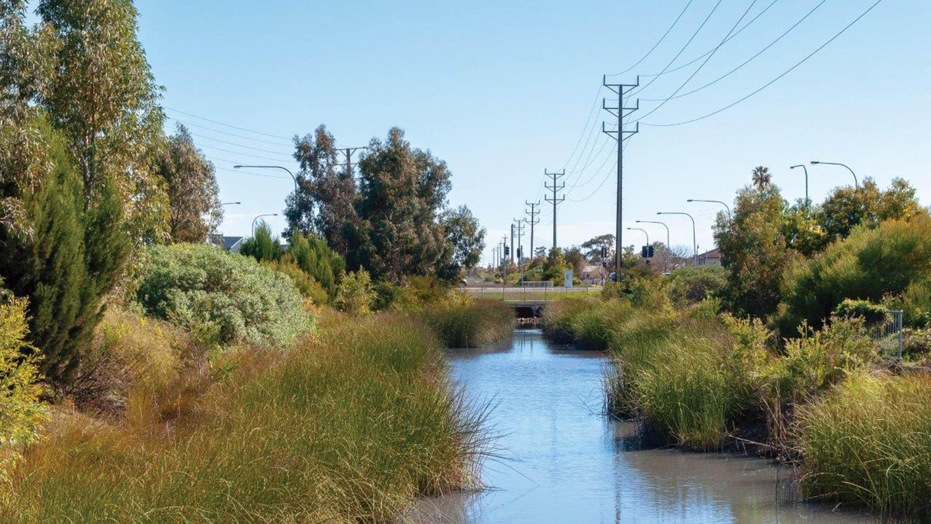 Kaleidoscope - Port Road Wetlands
