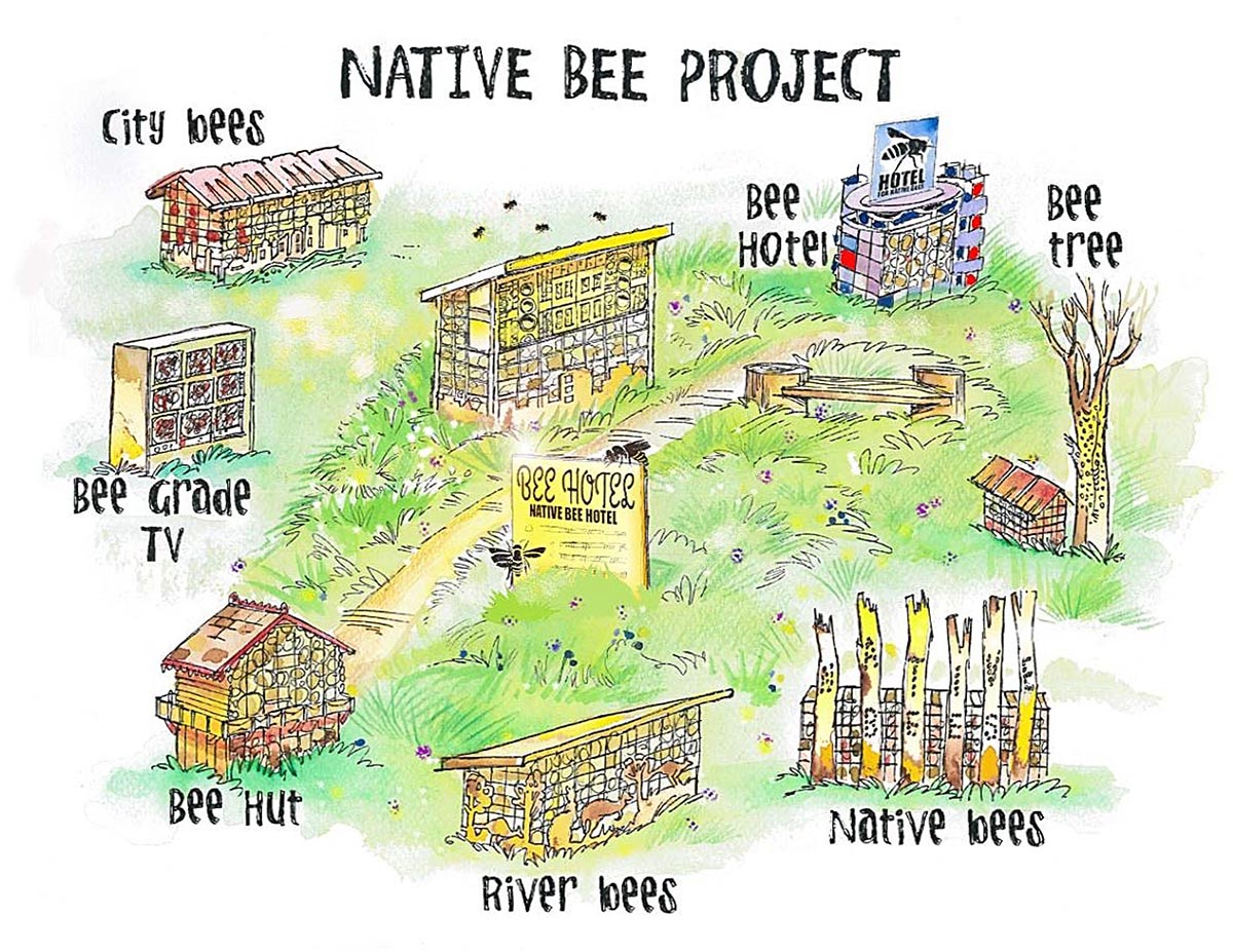 Native Bee Project Art Work