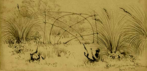 Native wicker snare in the swamp, 1844 G. F. Angas (NLA 2892737)
