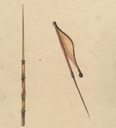 A cootpe-a reed spear, W. A. Cawthorne, 1855 (Mitchell Library)
