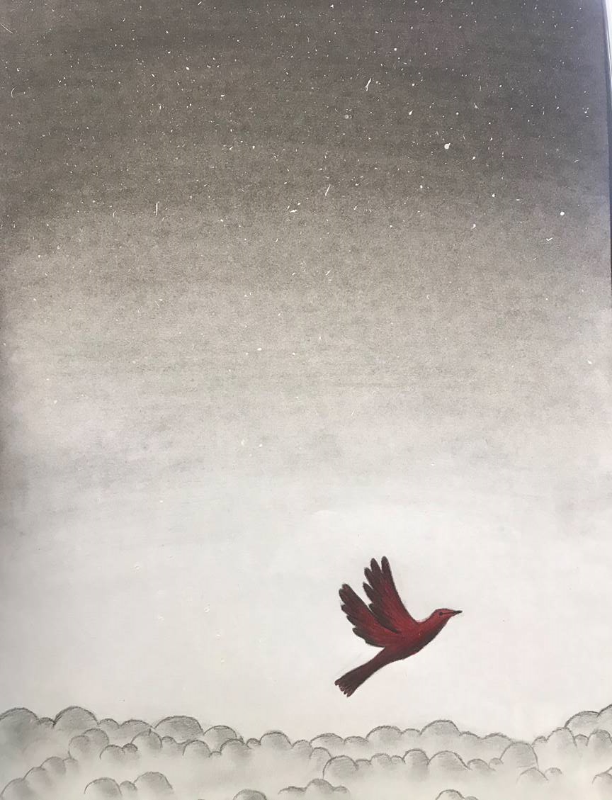 Dreams of a little red bird